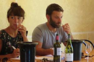 stage oenologie se former sur le vin